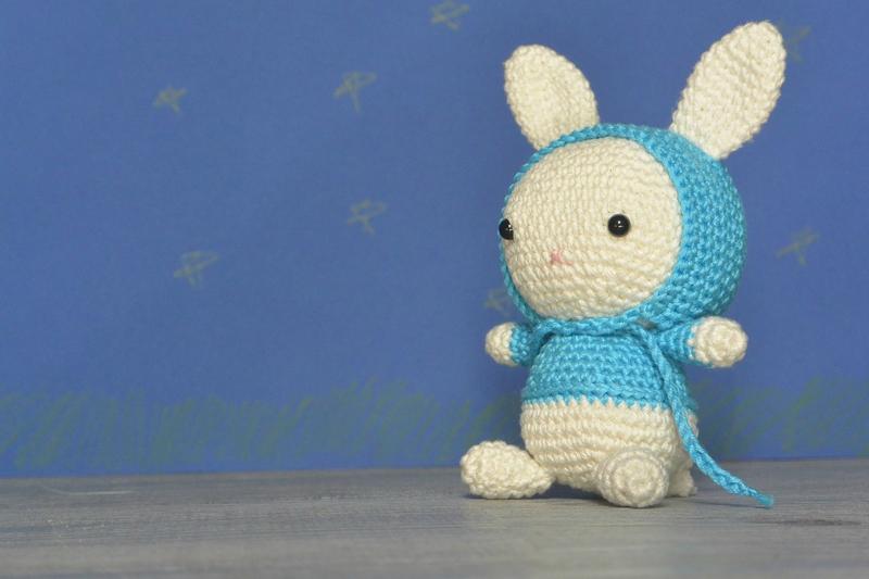 Bunny bleu (3)