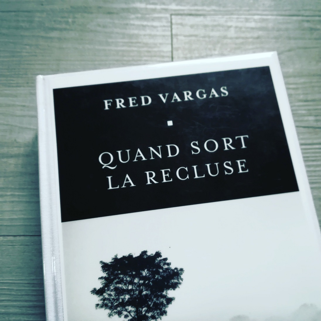 Fred Fred Vargas - Quand sort la recluse